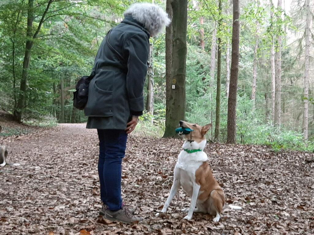 Foto: Ulla Viering und ein Collie im Wald
